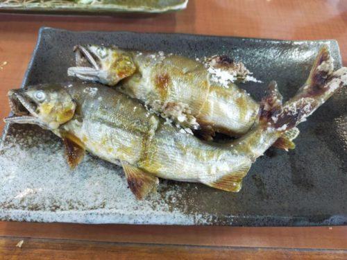 鮎料理やな川 鮎の塩焼き