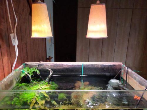 水槽 LED照明